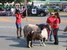 Parade 2012_5