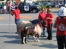Parade 2012_6