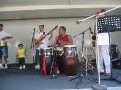 Puritas Arts (Street) Festival _46