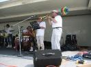 Puritas Arts (Street) Festival _47